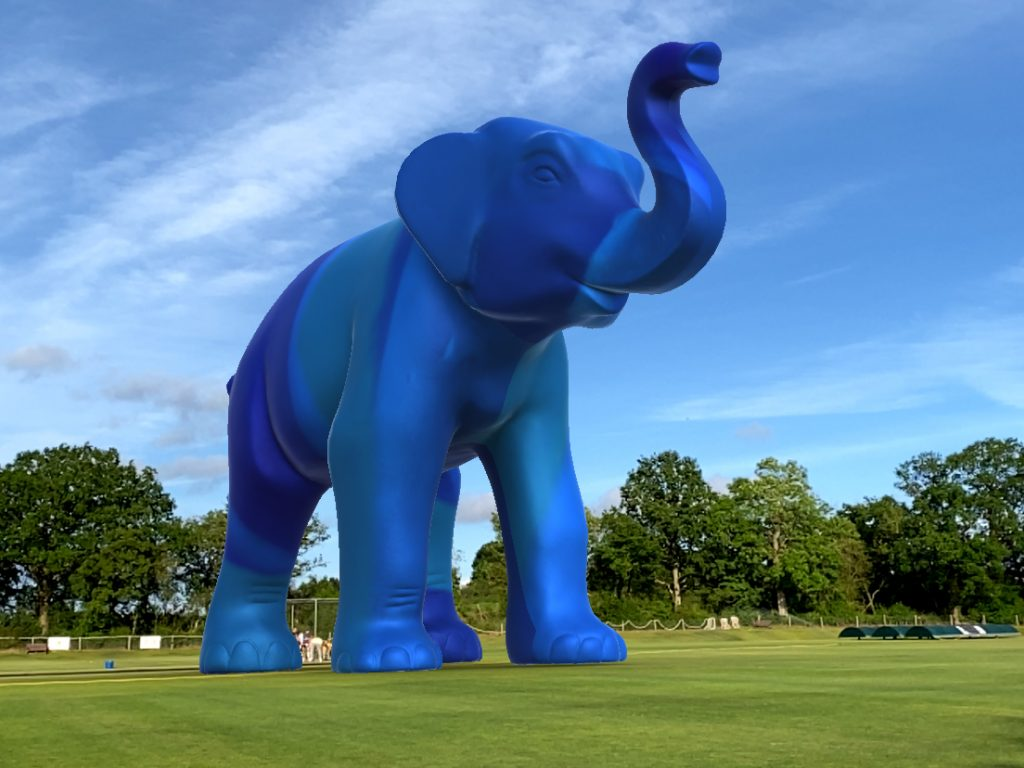 Augmented Reality Elephant In The Room Cricket Pitch